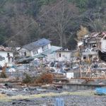 ムクドリの大量発生は地震の前触れ?